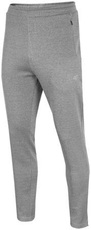 Spodnie męskie 4F T4L16-SPMD003